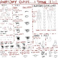 The Not-So-Accurate Anatomy Guide by stardazzle