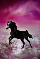 Horse In The Sky by Holly6669666