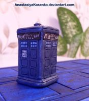 Little TARDIS by AnastasiyaKosenko