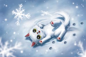 Happy cat in the snow by leamatte