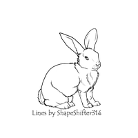 Rabbit Line Art by ShapeShifter314