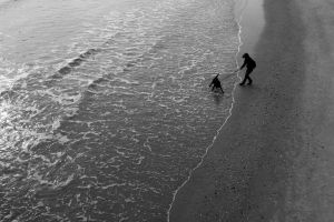 Dog Wants the Atlantic by clippercarrillo