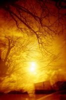 Redscale double expo 3 by aka33