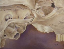 Cow Skull Painting by Melyssah6