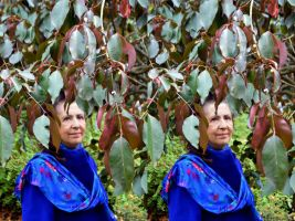 Stereoscopic Portrait Of Mrs A* With Euonymus by aegiandyad
