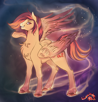 Sunchaser (a.k.a Chase) by CigarsCigarettes