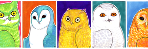 owl in the family art cards by theRast