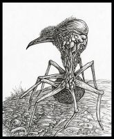 spider bird by JoeMacGown
