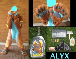 Alyx's Fursuit (Bonus Pictures) by PocketWolfCollection