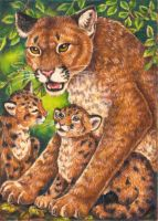 Cougar Totem Card Final by stephanielynn