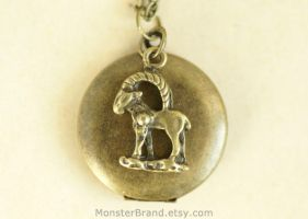 Aries Locket Necklace by MonsterBrandCrafts