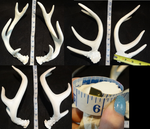 Limited Toony Antlers by DreamVisionCreations