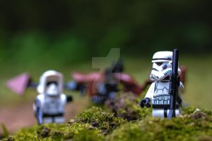 Checking on the guards of endor. by Oocatt