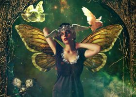 Fairy Queen: Keeper of Owls by Jessica-Lorraine-Z