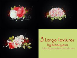 texture set: 42 by blackyaisa