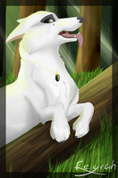 Feyrah in the Forest by Feyrah