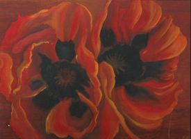 Poppies by LauraMel