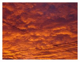 .: Sky in Flames :. by tongastock
