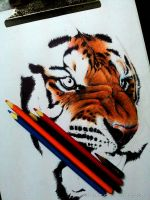Tiger WIP-2 by AnkitDArt