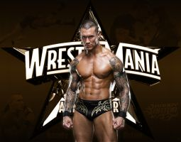 Randy Orton by flo861