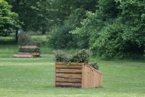 Brush Fence Skinny CC Obstacle by LuDa-Stock