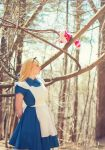 Alice I by EnchantedCupcake