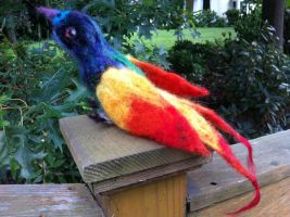 Needle-Felted Rainbow Bird by BirdMan-Hwah