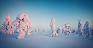 Frozen Giants by Ardak