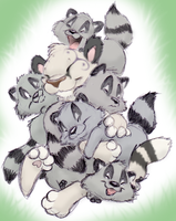 Raccoon Overload by ShoJoJim