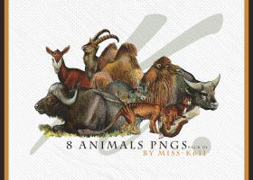 Animals Png Pack01 by MISS-K611
