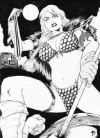 Red Sonja 2 by MarcelTheSouza
