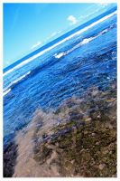 anyer.8 by wheelcap