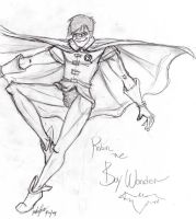 Robin The Boy Wonder by bluewolfskye
