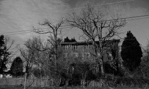 haunted Mansion b and w by timid-wolf