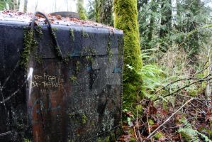 Metal Box In The Woods by MoriahKristine