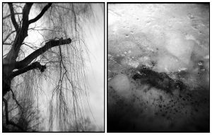 diptych_h 01 by marfia