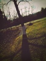 Tree by CindyLouWhoXox