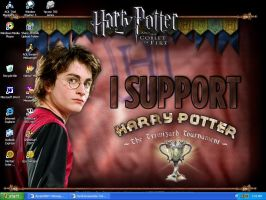 I Support Harry Potter by LindyArt