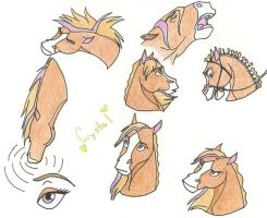 Me : Expressions by CrystalHuskie