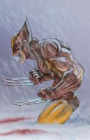 Wolvie by Covens-Oz by ChrisSummersArts