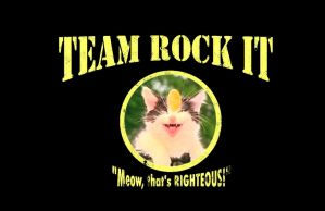 Team Rock It by fightingferret