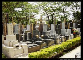 Tokugawa Graves by m1guelbm