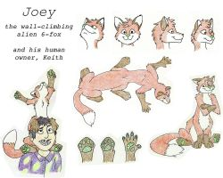 Joey Collage by Flexico