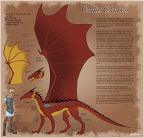Collin Character Sheet by sugarpoultry