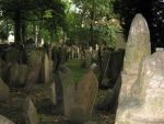 the old jewish cemetery 39 by Meltys-stock