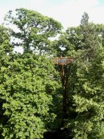 Treetop Walkway by cncplyr
