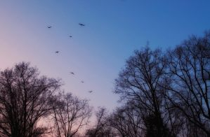 Flying sky by Andrei-Petrache