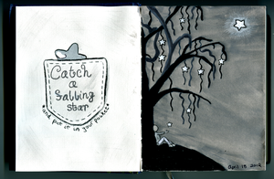 Diary Entry 3 - Catch a Falling Star by kuri-osity