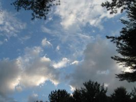 Maine sky 3 by crazygardener