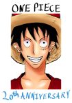 One Piece 20th Anniversary by 1804liam